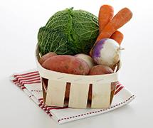Pratos principais vegetariano